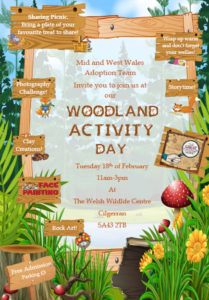 woodland-activity-day